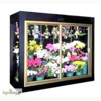 Холодильная камера-витрина для цветов