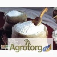 Компания продаст оптом пшеничную муку в/с, 1/с FСА 285 $/т. 2000 т