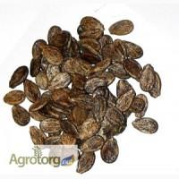 Продам семена арбуза (1-я репродукция, Ау Продюсер SAIS)