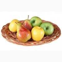 Куплю яблоки и груши оптом