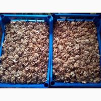Продам грецкий орех ядро