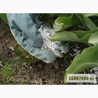 Средства защиты растений, микроудобрения, инокулянты