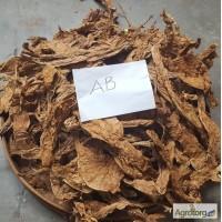 Табак Листовой Оптом от 20 тонн из Индонезии – Тип Jatim VO; Сорт JAB/LL; ферментированный