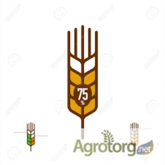 Куплю пшеницу 1, 2, 3 класса