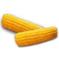 Куплю кукурузу нового урожая