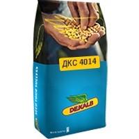 Семена кукурузы Монсанто ДКС 4014