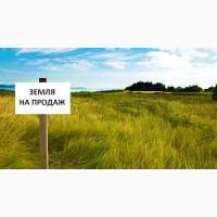 Продажа земли 100га Житомирская обл., осг в собственности