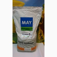Армада КЛ засухоустойчивый гибрид May Agro Seed Турция