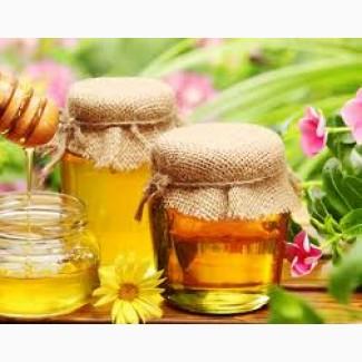 Закупаем мед дорого в днепропетровской области, Днепр