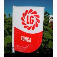Cемена подсолнечника Лимагрейн Тунка