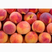 Персик для промышленой переработки