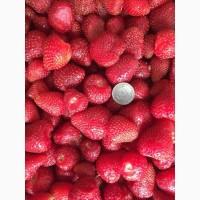 Куплю полуницю заморожену без плодоніжки