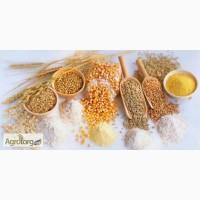 Давальческая переработка зерна в крупу