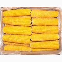 Кукуруза сладкая початок (качан) шоковой заморозки