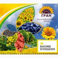 Посівний матеріал соняшник від НК «ГРАН»