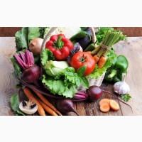 ПРОДАЕМ /Выращиваем СВЕКЛУ сетевого качества в обьеме