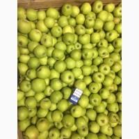 Продам яблоки оптом, от производителя