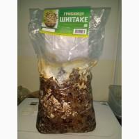 Продажа грибов Шиитаке от 80 грн/кг