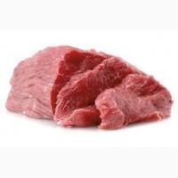 Ошеек» сорт свинины, продам
