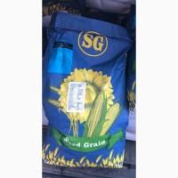 В наличии гибриды кукурузы Seed graine Глостер Робсон Лоренс Тор