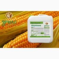 Комплекс мікродобрив позакореневого підживлення для кукурудзи