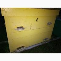 Продаж ВУЛИКІВ з бджолосім#039;ями