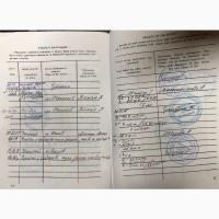 Продається гнідий мерин, 5-ти разовий чемпіон України