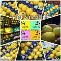 Лимоны оптом с Турции