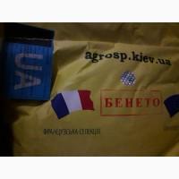Семена гибрида подсолнечника Бенето (А-F) Маисадур, Франция