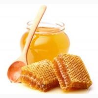 Мёд натуральный разнотравье - идеальный для кондитерки) Фасовка 15 кг
