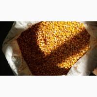 Реализуем кукурузы