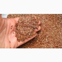 Flax seeds FOB ports of Black sea