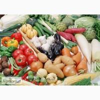 ПЕНТАФАГ- Биопрепарат против бактеризов и др.заболеваний растений