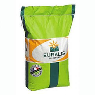 Семена гибридов подсолнечника и кукурузы Евралис