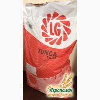 Скидки на качественные семена Syngenta Limagraine Euralis оригинал 2016 года