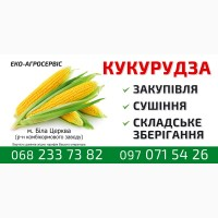 Закупівля вологої кукурудзи, сушіння, зберігання.Сушіння 49 гр, 1т% Самовивіз