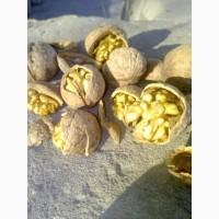 Продам 3т грецкого ореха