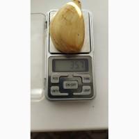 Рокамболь Зубок один кг 20 грв