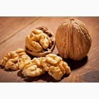 Купим грецкий орехи с документами для экспорта