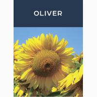 Продаем семена подсолнечника OLIVER, производитель Евросем