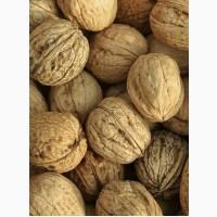 Продам грецкий орех урожая 2019 г