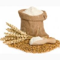 Продам высококачественную пшеничную муку высшего сорта