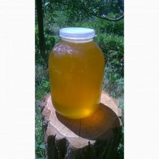 Продам майский мёд 2018 года