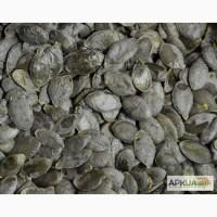 Продам насіння голонасінного гарбуза