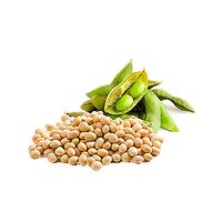 Купим сою Без ГМО по Киевской области