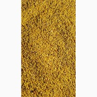 Продам пыльцу 90 гр.кг