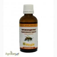 Настойка пчелиного подмора оптом от 1 литра