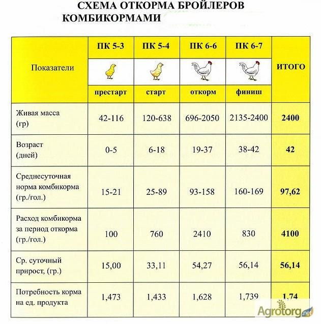 Схема кормления бройлеров полнорационным комбикормом