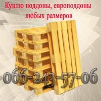 Куплю поддоны б/у деревянные, пластиковые всех основных размеров