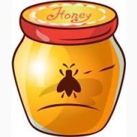 ОПТОВАЯ Закупка мёда по Днепропетровской и соседних областях